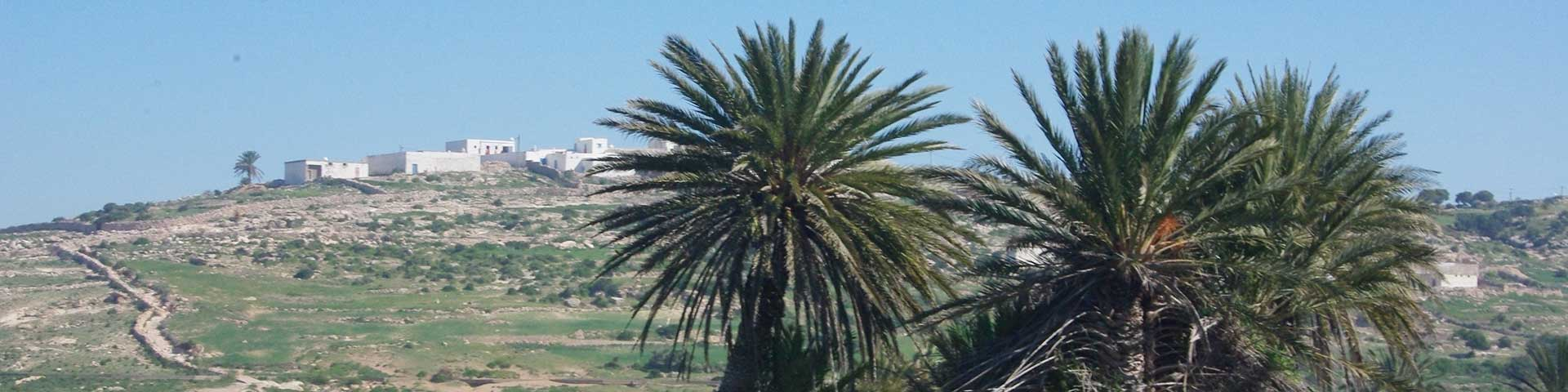 Morrocan Countryside